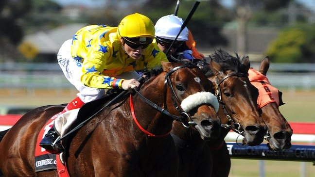 DUNADEN takes another Geelong Cup back to France