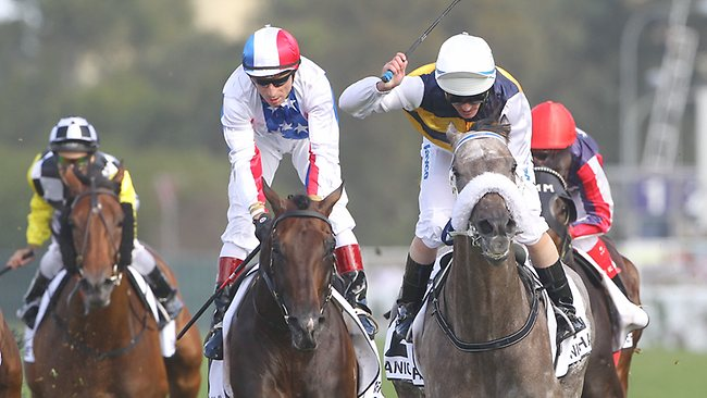AusFrance Racing Partnership- A fantastic opportunity to be involved in the excitement of French racing