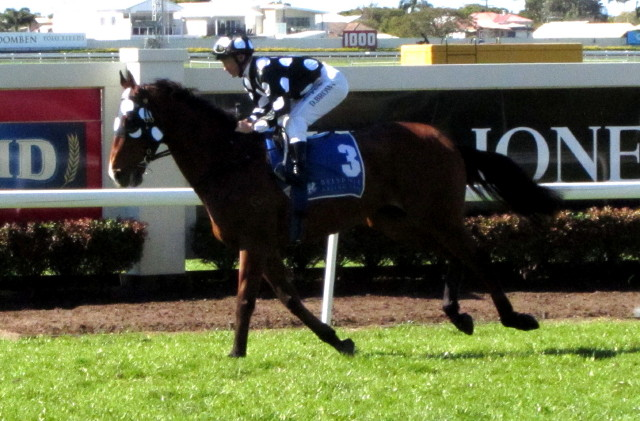 Dreams Are Free, Solzhenitsyn is Group 1 Bound