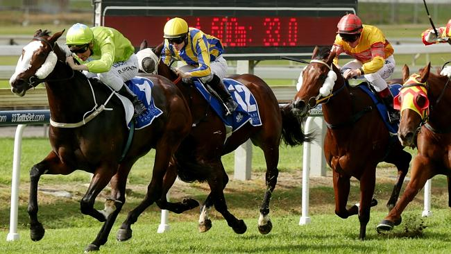 Queen Of Fashion leaves a stakes winner!