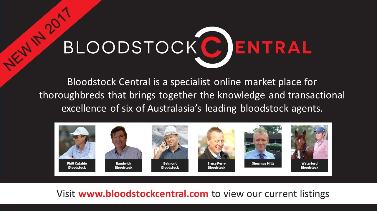 Bloodstock Central Launched