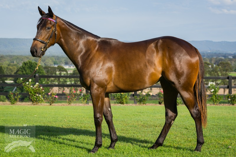 More Than Ready Filly Heads To Perth
