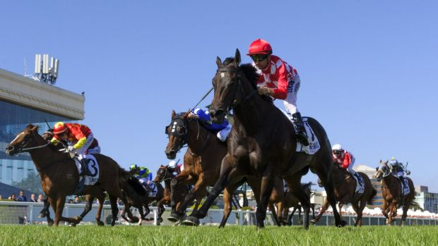 Sheidel wins the Oakleigh Plate